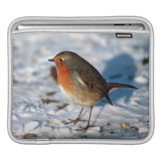 Robin In The Snow Sleeves For iPads