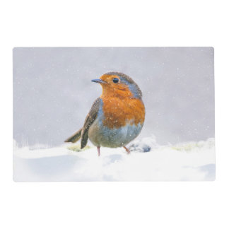 Robin In The Snow Placemat