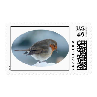 Robin in the snow stamps