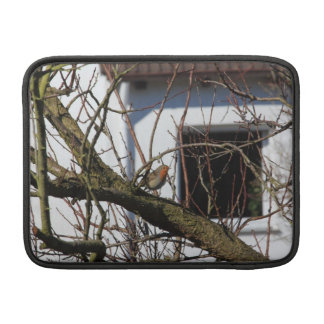 robin in the tree sleeves for MacBook air