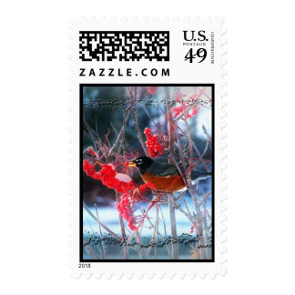 Robin in the Tree Postage
