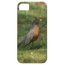Robin iPhone 5 Barely There Case. iPhone SE/5/5s Case