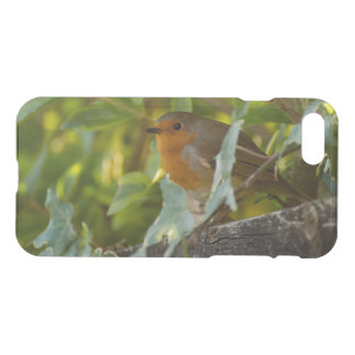 Robin iPhone 8/7 Case