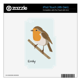 Robin iPod Touch 4G Skins