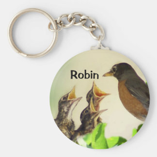 Robin Key Chain