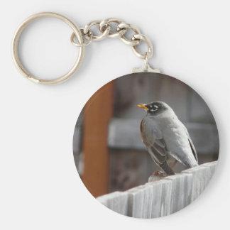 robin keychain