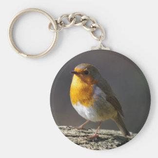 Robin Keyring Keychain