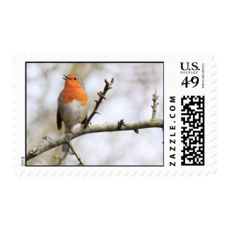 Robin Melody Postage