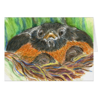 Robin Mother - Watercolor Pencil Greeting Card