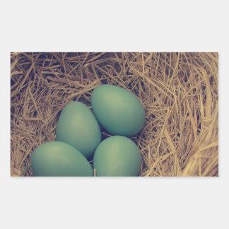 Robin Nest and Eggs Rectangular Sticker
