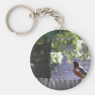 Robin on a fence keychain