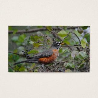 Robin on Berry Bush 1 Business Card