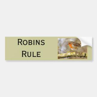 Robin on Branch Bumper Sticker