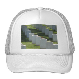 Robin on gravestone mesh hat
