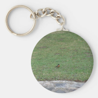 Robin on Lawn Keychain