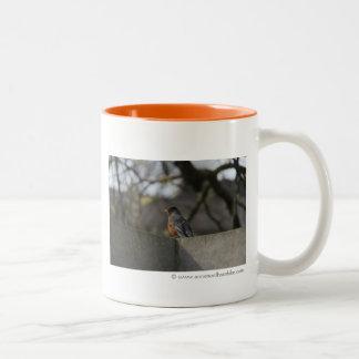 Robin On Wall Photograph Two-Tone Coffee Mug