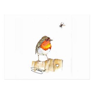 Robin Original Watercolor Design Postcard