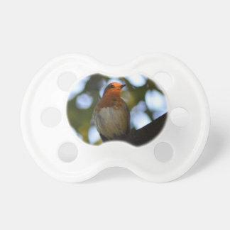Robin BooginHead Pacifier