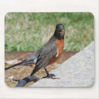 robin pencil art mouse pad