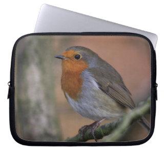 Robin photo laptop computer sleeves