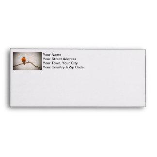 Robin Photo with Damask Swirl Design Envelope