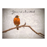Robin Photo with Damask Swirl Design 5x7 Paper Invitation Card