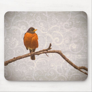 Robin Photo with Damask Swirl Design Mouse Pad