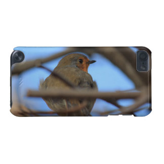 robin portrait iPod touch (5th generation) cases