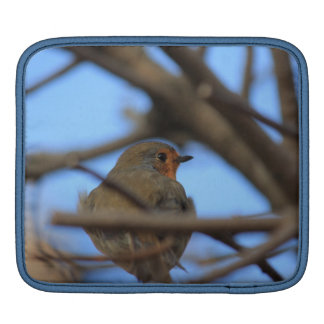 robin portrait sleeve for iPads