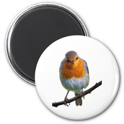 Robin Red Breast 2 Inch Round Magnet