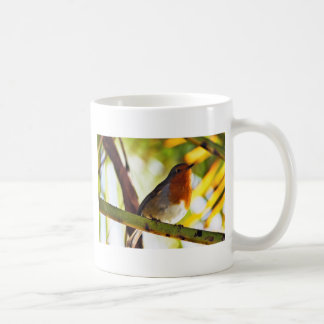 Robin red breast bird coffee mug