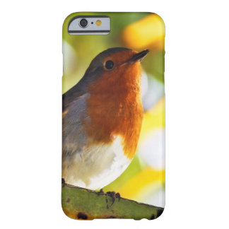 Robin red breast bird iPhone 6 case