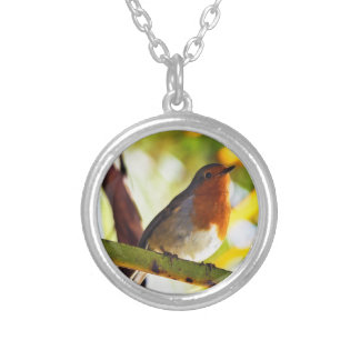 Robin red breast bird round pendant necklace