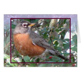 Robin Red Breast Card