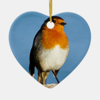 Robin red-breast for Heart Ornament