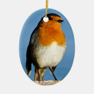 Robin red-breast for Oval Ornament