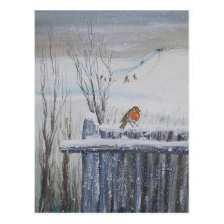Robin Red Breast Postcard