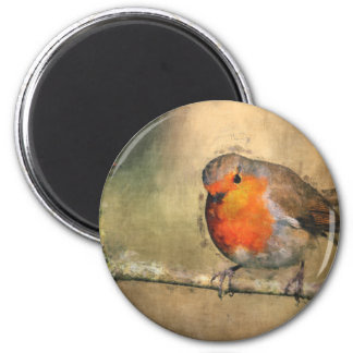 Robin Redbreast 2 Inch Round Magnet