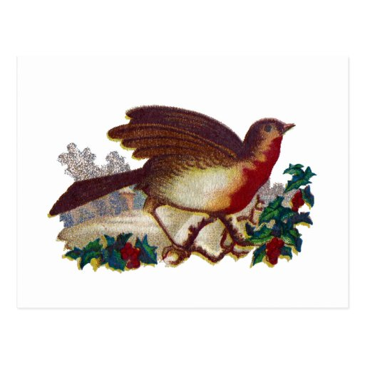 Robin Redbreast and Holly Victorian Postcard