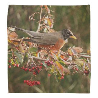 Robin Redbreast Bird Berries Wildlife Bandana