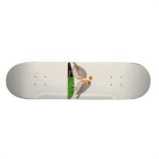 Robin redbreast bird love skateboard deck