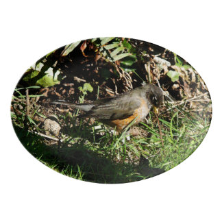 Robin Redbreast Bird Wildlife Serving Platter Porcelain Serving Platter