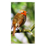ROBIN REDBREAST BUSINESS CARD