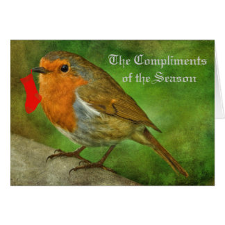 ROBIN REDBREAST CHRISTMAS CARD