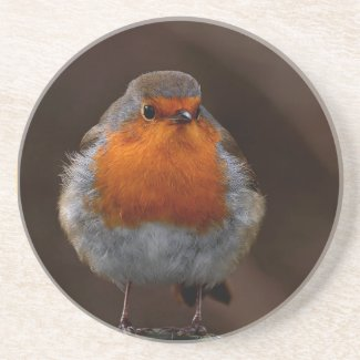 Robin Redbreast Coaster coaster