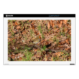 """Robin Redbreast Decal For 17"""" Laptop"""
