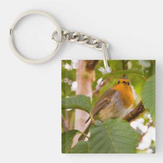 """Robin Redbreast in Wild Cherry Tree"" Key Chains"