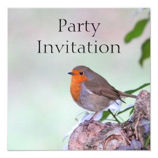 """Robin Redbreast Invitation 5.25"""" Square Invitation Card"""
