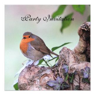 """Robin Redbreast Party Invitation 5.25"""" Square Invitation Card"""