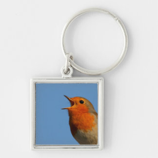 Robin Redbreast Silver-Colored Square Keychain